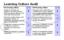 Learning Culture Audit